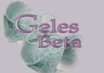 GELES BETA C.A