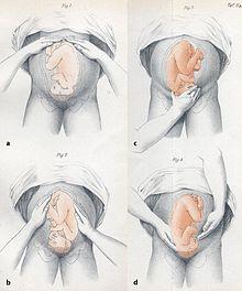 medico-obstetra10